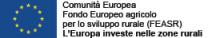 Comunità Europea - Fondo europeo agricolo per lo sviluppo rurale